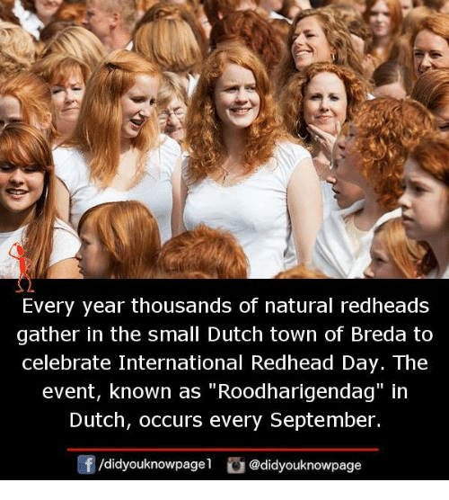 "redhead: Every year thousands of natural redheads  gather in the small Dutch town of Breda to  celebrate International Redhead Day. The  event, known as ""Roodharigendag"" in  Dutch, occurs every September.  /didyouknowpagel @didyouknowpage"