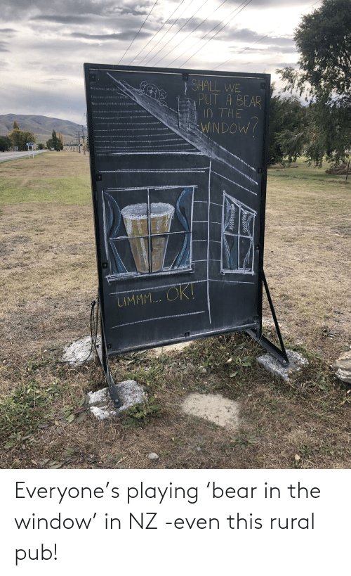 Pub: Everyone's playing 'bear in the window' in NZ -even this rural pub!