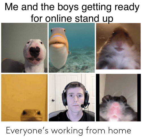 working from home: Everyone's working from home