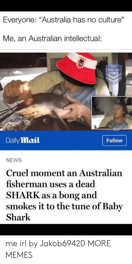 """rebels: Everyone: """"Australia has no culture""""  Me, an Australian intellectual:  NRL  SLEDGING  REBELS  DailyMail  Follow  NEWS  Cruel moment an Australian  fisherman uses a dead  SHARK as a bong and  smokes it to the tune of Baby  Shark me irl by Jakob69420 MORE MEMES"""