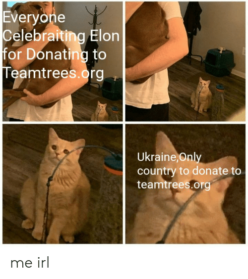 Ukraine: Everyone  Celebraiting Elon  for Donating to  Teamtrees.org  Ukraine,Only  country to donate to  teamtrees.org me irl