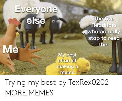 Redditors: Everyone  else  The five  Redditors  who actually  stop to read  this  Me  My best  effort at  making a  meme Trying my best by TexRex0202 MORE MEMES