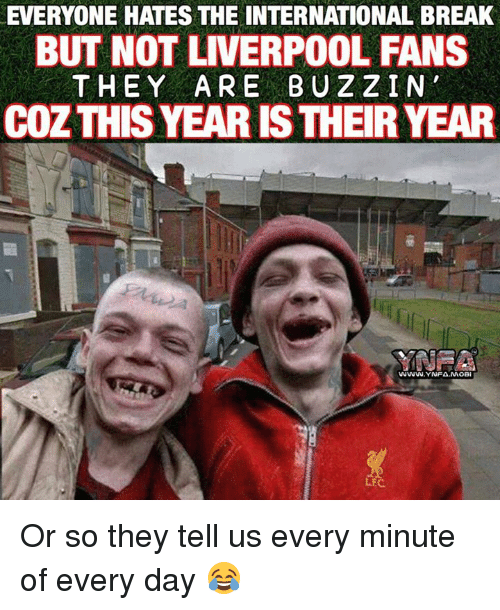 Fanli: EVERYONE HATES THE INTERNATIONAL BREAK  BUT NOT LIVERPOOL FANS  THEY ARE BUZZ IN  COZTHISYEARISTHEIR YEAR  LEC Or so they tell us every minute of every day 😂