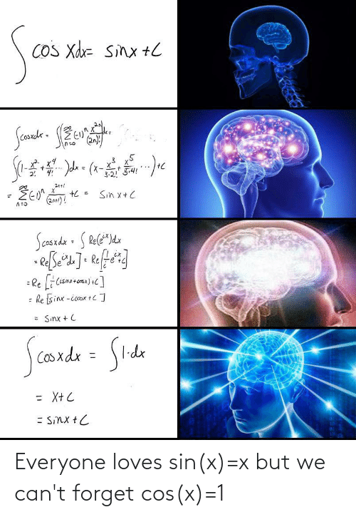 X X: Everyone loves sin(x)=x but we can't forget cos(x)=1