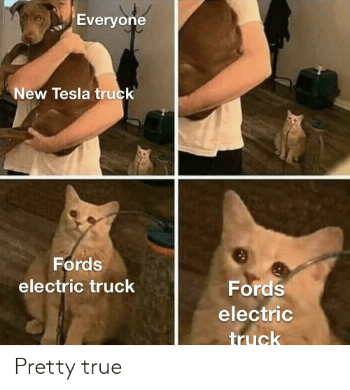 Fords: Everyone  New Tesla truck  Fords  electric truck  Fords  electric  truck Pretty true
