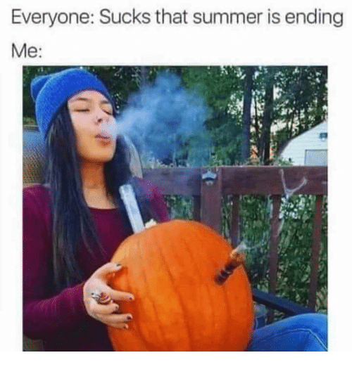 Memes, Summer, and 🤖: Everyone: Sucks that summer is ending  Me:
