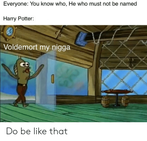 Harry Potter: Everyone: You know who, He who must not be named  Harry Potter:  Voldemort my nigga  CD Do be like that
