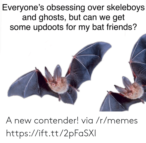 Updoots: Everyone's obsessing over skeleboys  and ghosts, but can we get  some updoots for my bat friends? A new contender! via /r/memes https://ift.tt/2pFaSXl