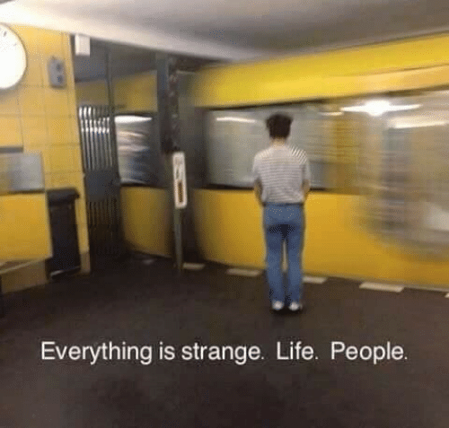 Life, People, and Everything: Everything is strange. Life. People