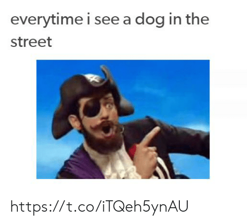 Dog, The Street, and Street: everytime i see a dog in the  street https://t.co/iTQeh5ynAU