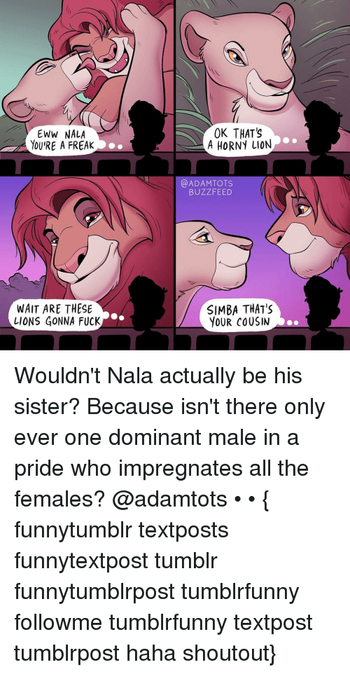 Hornys: EWW NALA  YOU RE A FREAK  WAIT ARE THESE  LIONS GONNA FUCK  OK THATS  A HORNY LION  ADAM TOTS  BUZZ FEED  SIMBA THAT'S  YOUR COUSIN Wouldn't Nala actually be his sister? Because isn't there only ever one dominant male in a pride who impregnates all the females? @adamtots • • { funnytumblr textposts funnytextpost tumblr funnytumblrpost tumblrfunny followme tumblrfunny textpost tumblrpost haha shoutout}