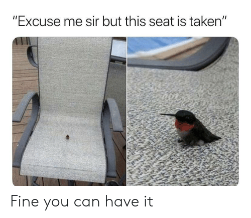"sir: ""Excuse me sir but this seat is taken"" Fine you can have it"