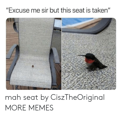 "Dank, Memes, and Taken: ""Excuse me sir but this seat is taken"" mah seat by CiszTheOriginal MORE MEMES"