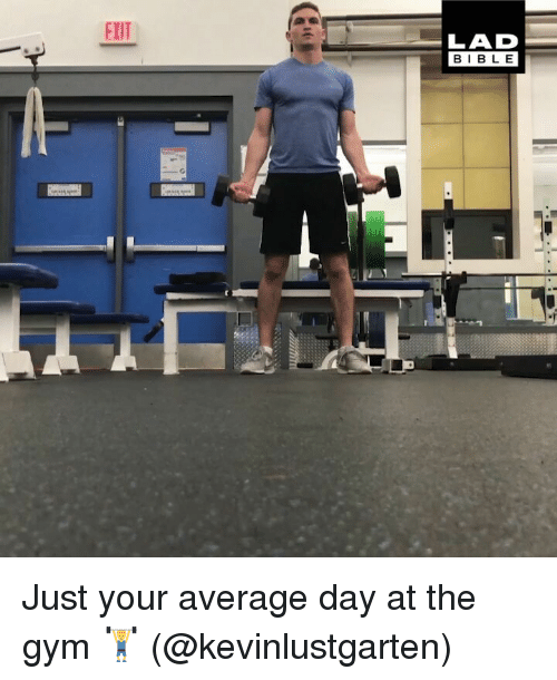 Gym, Memes, and Bible: EXIT  LAD  BIBLE Just your average day at the gym 🏋️ (@kevinlustgarten)