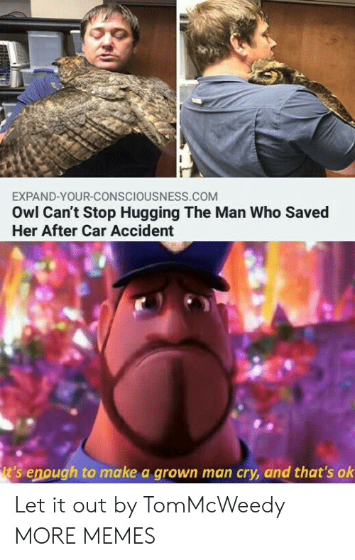 consciousness: EXPAND-YOUR-CONSCIOUSNESS.COM  Owl Can't Stop Hugging The Man Who Saved  Her After Car Accident  t's enough to make a grown man cry, and that's ok Let it out by TomMcWeedy MORE MEMES