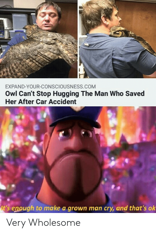 consciousness: EXPAND-YOUR-CONSCIOUSNESS.COM  Owl Can't Stop Hugging The Man Who Saved  Her After Car Accident  t's enough to make a grown man cry, and that's ok Very Wholesome