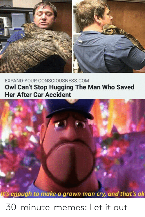 consciousness: EXPAND-YOUR-CONSCIOUSNESS.COM  Owl Can't Stop Hugging The Man Who Saved  Her After Car Accident  t's enough to make a grown man cry, and that's ok 30-minute-memes:  Let it out