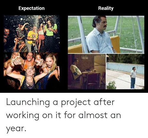 Expectation Reality: Expectation  Reality Launching a project after working on it for almost an year.