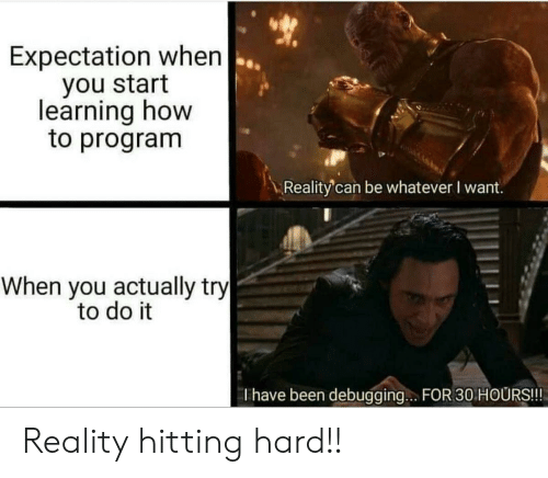 hitting: Expectation when  you start  learning how  to program  Reality'can be whatever I want.  When you actually try  to do it  Thave been debugging.. FOR 30 HOURS!!! Reality hitting hard!!