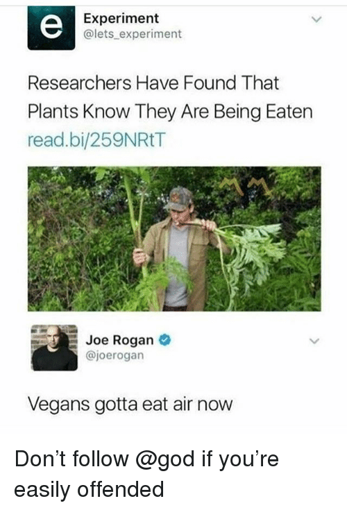 Joe Rogan: Experiment  @lets experiment  Researchers Have Found That  Plants Know They Are Being Eaten  read.bi/259NRtT  Joe Rogan  @joerogan  Vegans gotta eat air now Don't follow @god if you're easily offended