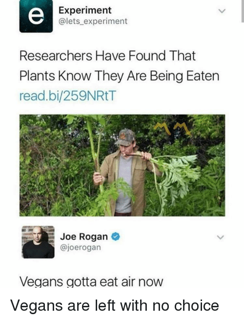 Joe Rogan, Air, and Joe: Experiment  @lets_ experiment  Researchers Have Found That  Plants Know They Are Being Eaten  read.bi/259NRtT  Joe Rogan  @joerogan  Vegans gotta eat air now Vegans are left with no choice