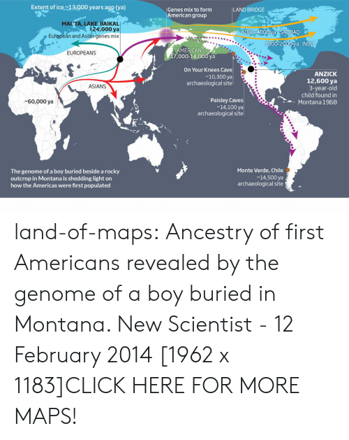 Anaconda, Asian, and Click: Extent of ice13.000 years ago (ya)  Genes mix to form  American group  LAND BRIDGE  MAL'TA, LAKE BAIKAL  24,000 ya  6000-4000 va SAOOAO  European and Asian genes mix  3000-2000 va INUI  MERICANS  17,000-14,000 ya  EUROPEANS  On Your Knees Cave  ~10,300 ya  archaeological site  ANZICK  12,600 ya  3-year-old  child found in  Montana 1968  ASIANS  Paisley Caves  14,100 ya  archaeological site  60,000 ya  Monte Verde, Chile  The genome of a boy buried beside a rocky  outcrop in Montana is shedding light on  how the Americas were first populated  14,500 ya  archaeological site land-of-maps:  Ancestry of first Americans revealed by the genome of a boy buried in Montana. New Scientist - 12 February 2014 [1962 x 1183]CLICK HERE FOR MORE MAPS!