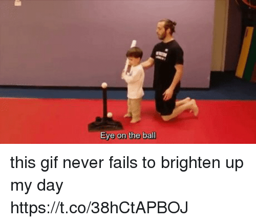 Brightened: Eye on the ball this gif never fails to brighten up my day https://t.co/38hCtAPBOJ