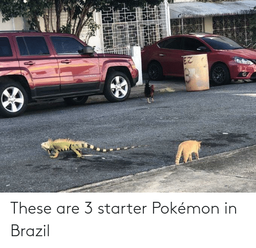 These Are: EZ These are 3 starter Pokémon in Brazil
