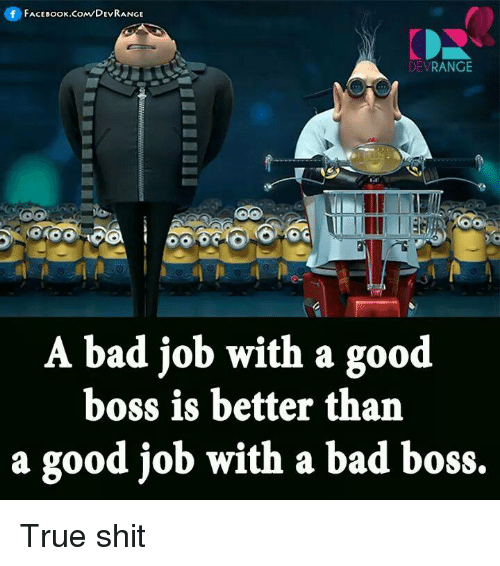 good boss bad boss outline Bad boss/best boss bringing training down to business bad bosses can be found at every level of management, and they often display the same characteristics during nearly all of my leadership development workshops, after teaching how important the manager-employee relationsh.