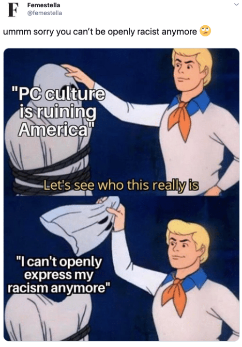 """America, Racism, and Sorry: F  Femestella  @femestella  ummm sorry you can't be openly racist anymore  """"PC culture  is ruining  America""""  Let's see who this really is  """"I can't openly  express my  racism anymore"""""""