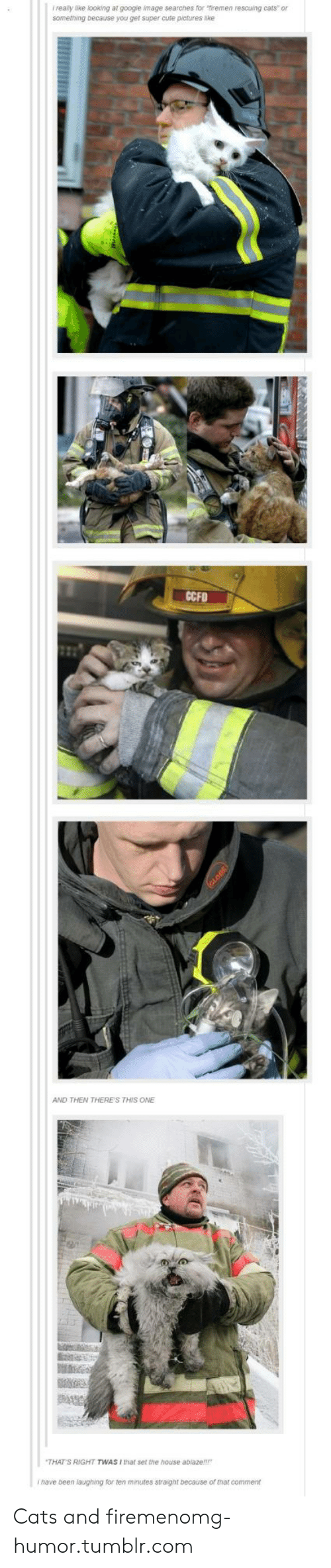Googie: f realy like looking at googie mage searches for iremen rescuing cars or  something because you gef super cute pictures nke  CCFD  AND THEN THERE'S THIS ONE  THAT'S RIGHT TWAS I that set the house abiaze!!!  i nave been laughing for ten minutes straignt because or that comment Cats and firemenomg-humor.tumblr.com