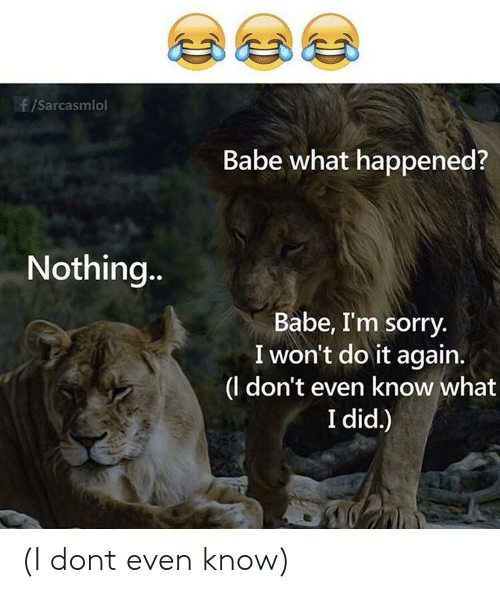 I Wont Do It Again: f/Sarcasmlol  Babe what happened?  Nothin.  Babe, I'm sorry.  I won't do it again.  |(l don't even know what  I did.) (I dont even know)