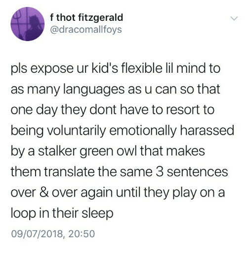 Stalker: f thot fitzgerald  @dracomallfoys  pls expose ur kid's flexible lil mind to  as many languages as u can so that  one day they dont have to resort to  being voluntarily emotionally harassed  by a stalker green owl that makes  them translate the same 3 sentences  over & over again until they play on a  loop in their sleep  09/07/2018, 20:50