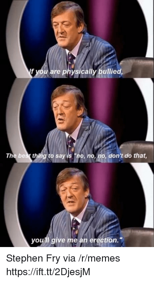 "Memes, Stephen, and Erection: f you are physically bullied,  The bes thing to say is ""no, no, no, don't do that  you'll give me an erection. Stephen Fry via /r/memes https://ift.tt/2DjesjM"