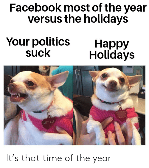 Suck: Facebook most of the year  versus the holidays  Your politics  suck  Нарру  Holidays  LILY LU It's that time of the year