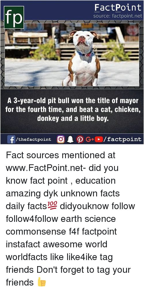 Pits: FactPoint  source: factpoint.net  A 3-year-old pit bull won the title of mayor  for the fourth time, and beat a cat, chicken,  donkey and a little boy.  f/thefactpoint  G+/factpoint Fact sources mentioned at www.FactPoint.net- did you know fact point , education amazing dyk unknown facts daily facts💯 didyouknow follow follow4follow earth science commonsense f4f factpoint instafact awesome world worldfacts like like4ike tag friends Don't forget to tag your friends 👍