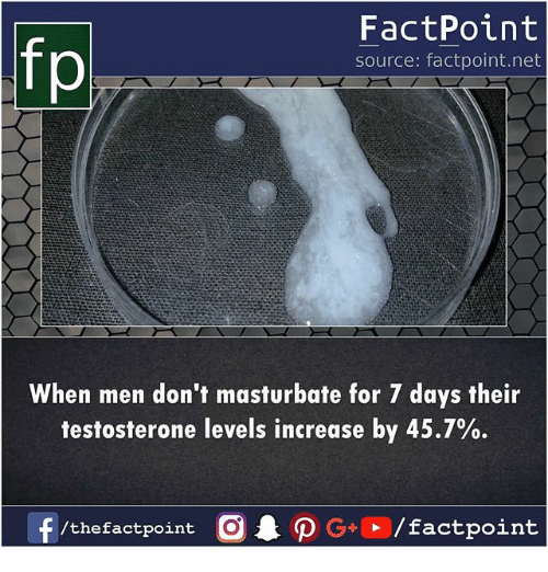 dont masturbate: FactPoint  source: factpoint.net  p,  When men don't masturbate for 7 days their  testosterone levels increase by 45.7%  f /thefactpoint  CAO G+  / factpoint