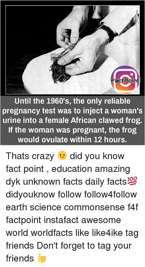 Hourse: FactPoint  Until the 1960's, the only reliable  pregnancy test was to inject a woman's  urine into a female African clawed frog.  If the woman was pregnant, the frog  would ovulate within 12 hours. Thats crazy 😐 did you know fact point , education amazing dyk unknown facts daily facts💯 didyouknow follow follow4follow earth science commonsense f4f factpoint instafact awesome world worldfacts like like4ike tag friends Don't forget to tag your friends 👍