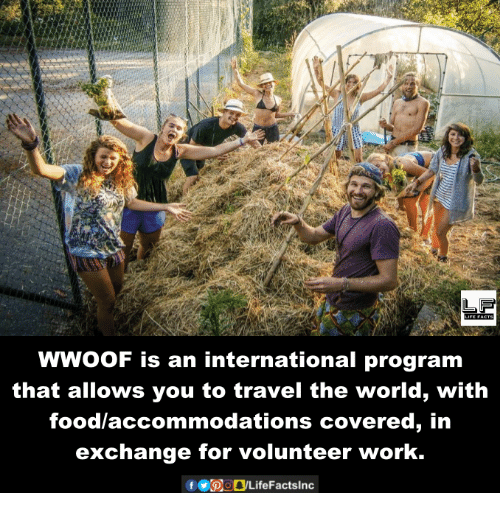 accommodating: FACTS  WWooF is an international program  that allows you to travel the world, with  food accommodations covered, in  exchange for volunteer work