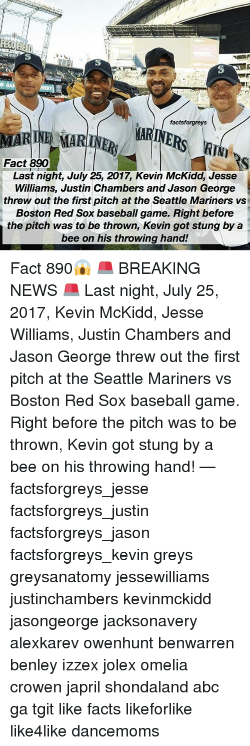 Red Sox: factsforgreys  MARINE MARINR ARINE  Fact 890  Last night, July 25, 2017, Kevin McKidd, Jesse  Williams, Justin Chambers and Jason George  threw out the first pitch at the Seattle Mariners vs  Boston Red Sox baseball game. Right before  the pitch was to be thrown, Kevin got stung by a  bee on his throwing hand! Fact 890😱 🚨 BREAKING NEWS 🚨 Last night, July 25, 2017, Kevin McKidd, Jesse Williams, Justin Chambers and Jason George threw out the first pitch at the Seattle Mariners vs Boston Red Sox baseball game. Right before the pitch was to be thrown, Kevin got stung by a bee on his throwing hand! — factsforgreys_jesse factsforgreys_justin factsforgreys_jason factsforgreys_kevin greys greysanatomy jessewilliams justinchambers kevinmckidd jasongeorge jacksonavery alexkarev owenhunt benwarren benley izzex jolex omelia crowen japril shondaland abc ga tgit like facts likeforlike like4like dancemoms