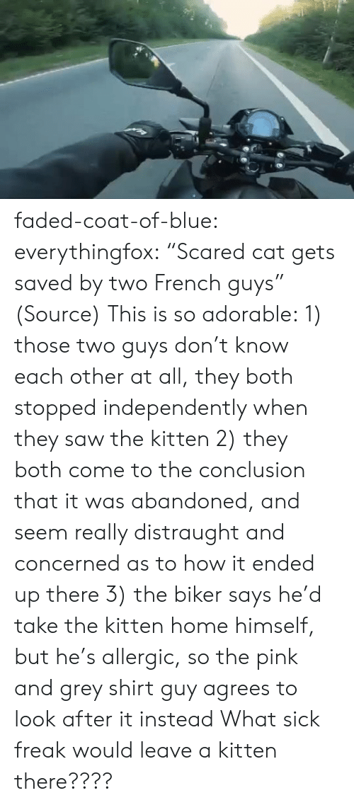 "concerned: faded-coat-of-blue: everythingfox:   ""Scared cat gets saved by two French guys"" (Source)   This is so adorable: 1) those two guys don't know each other at all, they both stopped independently when they saw the kitten  2) they both come to the conclusion that it was abandoned, and seem really distraught and concerned as to how it ended up there 3) the biker says he'd take the kitten home himself, but he's allergic, so the pink and grey shirt guy agrees to look after it instead   What sick freak would leave a kitten there????"