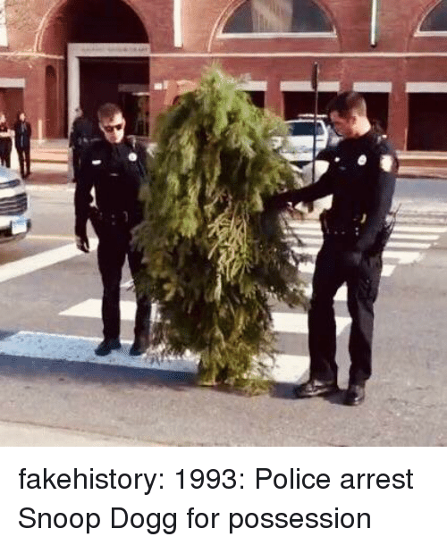 snoop dogg: fakehistory:  1993: Police arrest Snoop Dogg for possession