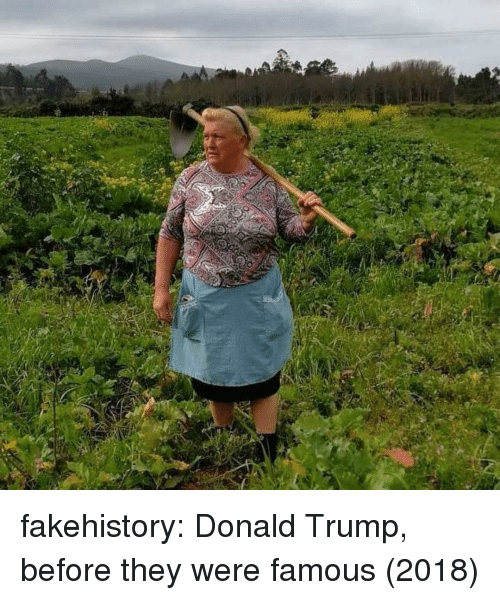 Donald Trump, Tumblr, and Blog: fakehistory:  Donald Trump, before they were famous (2018)