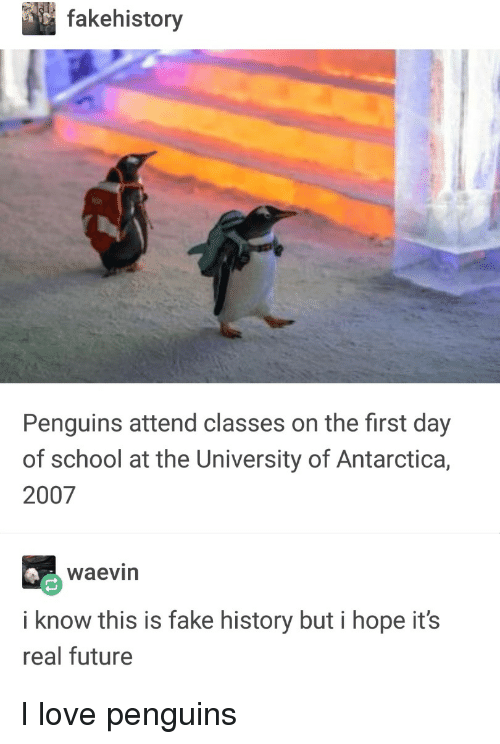 first day of school: fakehistory  Penguins attend classes on the first day  of school at the University of Antarctica,  2007  waevin  i know this is fake history but i hope it's  real future I love penguins