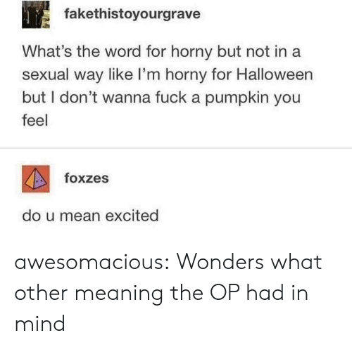 Halloween, Horny, and Tumblr: fakethistoyourgrave  What's the word for horny but not in a  sexual way like I'm horny for Halloween  but I don't wanna fuck a pumpkin you  feel  foxzes  do u mean excited awesomacious:  Wonders what other meaning the OP had in mind