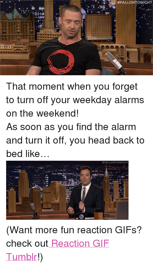 """reaction gifs:  #FALLONTONIGHT  I- <p>That moment when you forget to turn off your weekday alarms on the weekend!</p> <p>As soon as you find the alarm and turn it off, you head back to bed like&hellip;<img alt="""""""" src=""""https://78.media.tumblr.com/7b25ae64159d230cf5d838b0d3505d58/tumblr_nbl7qqBquq1tv4k5po2_400.gif""""/></p> <p>(Want more fun reaction GIFs? check out<a href=""""http://fallontonightgifs.tumblr.com/"""" target=""""_blank""""> Reaction GIF Tumblr</a>!)</p>"""
