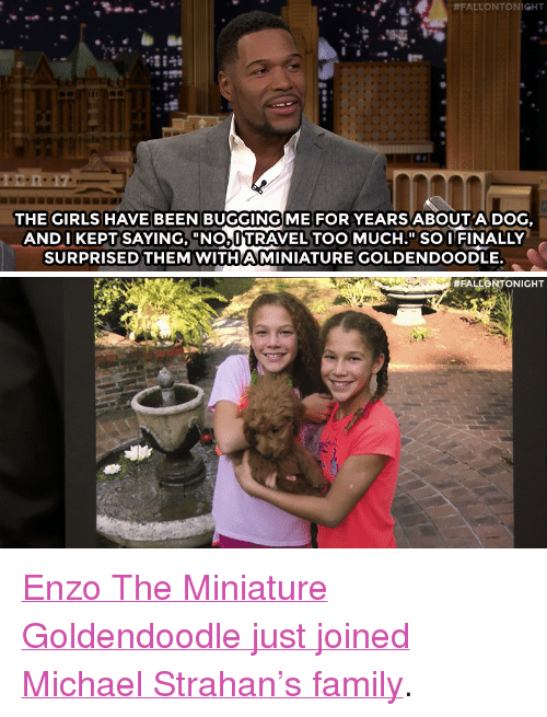 """Nbc Com:  #FALLONTONIGHT  THE GIRLS HAVE BEEN BUGGINGİ ME FOR YEARS ABOUT A DOG  AND I KEPTSAYING, """"NOAUTRAVEL TOO MUCH.""""SO I FINALLY  SURPRISED THEM WITHAMINIATURE GOLDENDOODLE.   <p><a href=""""http://www.nbc.com/the-tonight-show/video/michael-strahan-is-selfish-with-his-kids-puppy/3454860"""" target=""""_blank"""">Enzo The Miniature Goldendoodle just joined Michael Strahan&rsquo;s family</a>.<br/></p>"""