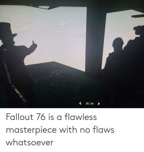 flaws: Fallout 76 is a flawless masterpiece with no flaws whatsoever