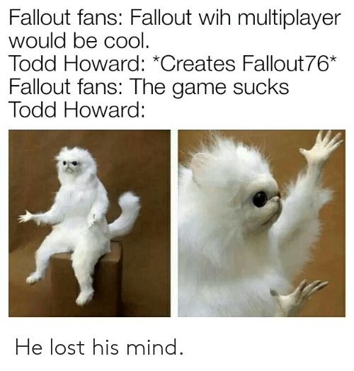 Fallout Fans Fallout Wih Multiplayer Would Be Cool Todd