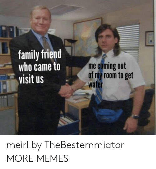Who Came: family friend  who came to  visit us  me coming out  of my room to get  water meirl by TheBestemmiator MORE MEMES